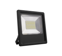 LED Prožektorius 50W MAX-LED IP65